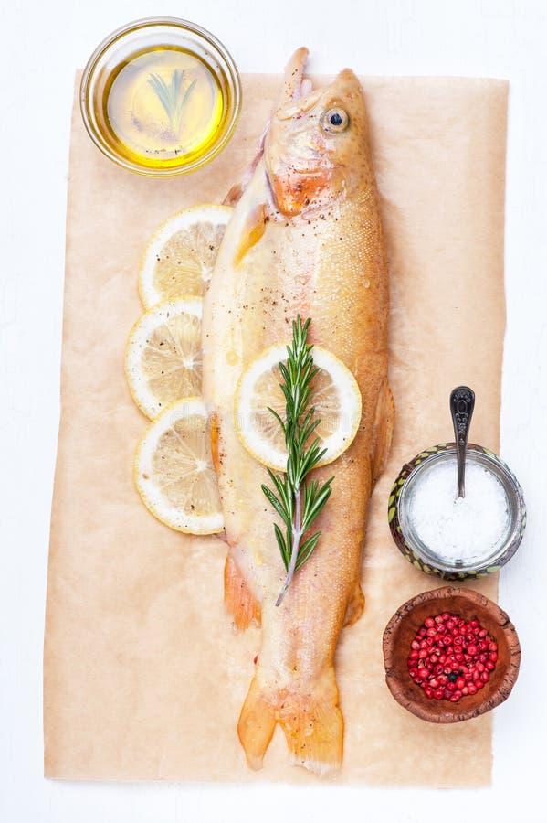 Ruwe vissen gouden forel met kruiden en kruiden royalty-vrije stock fotografie
