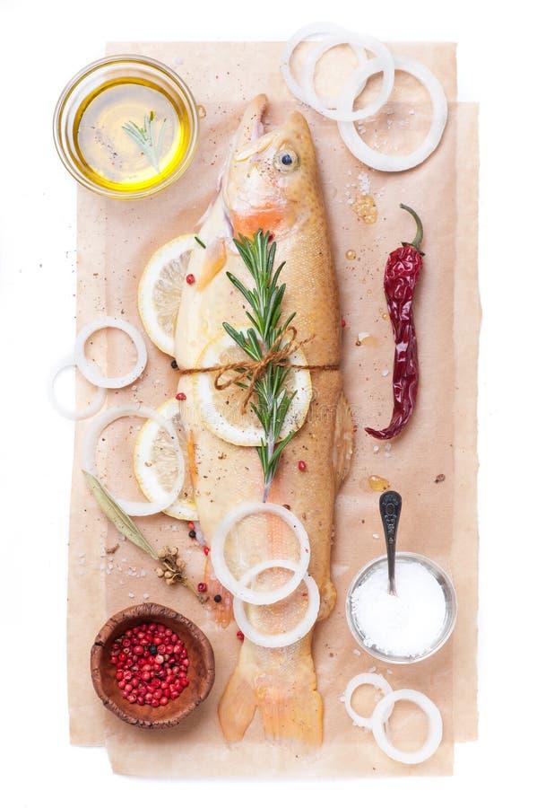 Ruwe vissen gouden forel met kruiden, kruiden en uien stock foto's