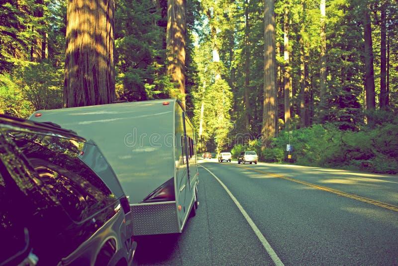 RV i redwoodträdskog royaltyfri foto