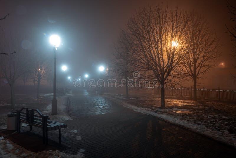 ?rvores e bancos das lanternas na n?voa na noite no parque Autumn Night atrasado no parque Bancos e aleia de madeira do parque fotografia de stock