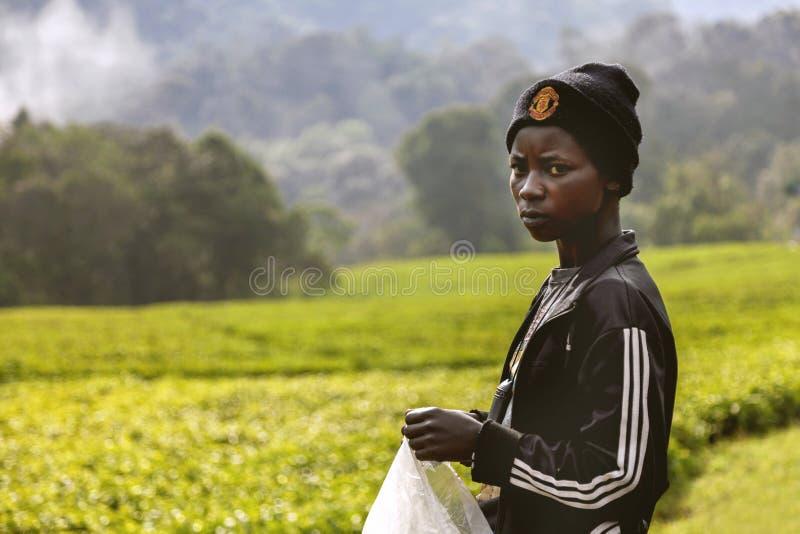 The Rwandan young girl. stock images
