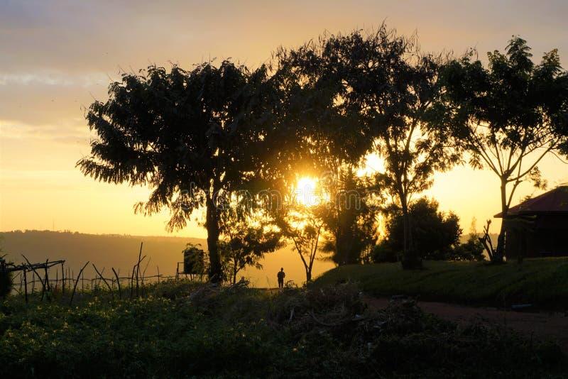 Rwandisk man som går in i solnedgången royaltyfria foton