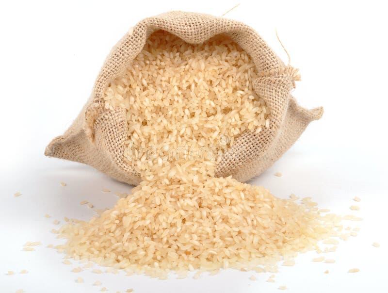 ryż obrazy royalty free