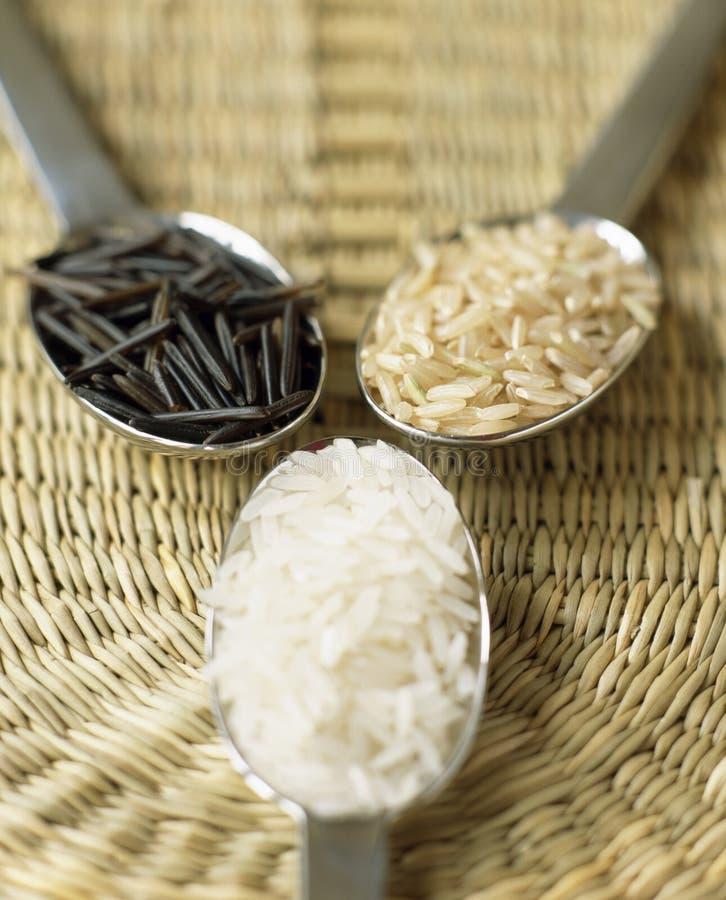 ryż biały dziki fotografia stock