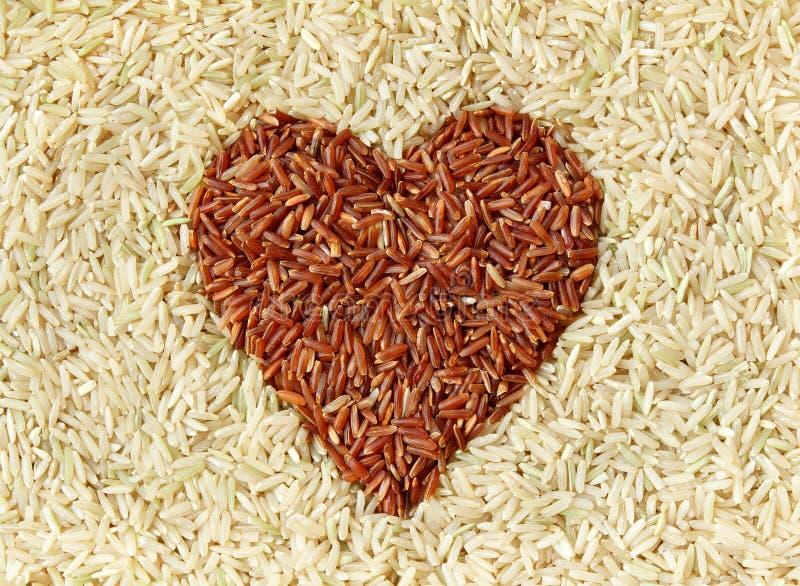 ryż czerwoni ryż zdjęcia stock