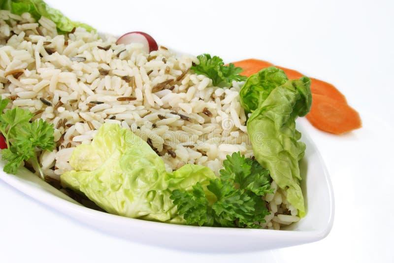 ryż dzicy zdjęcie stock