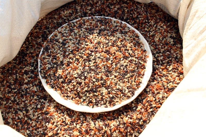 Ryżowy jagodowy tło zdjęcia stock
