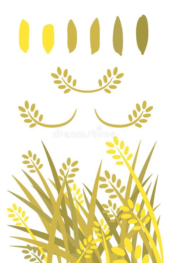 Ryżowy wektor ilustrujący kwiaty sztuki magazynki ilustracji drzewo Złoci ryż i ryżowy ziarna sillhouette kolor ilustracji