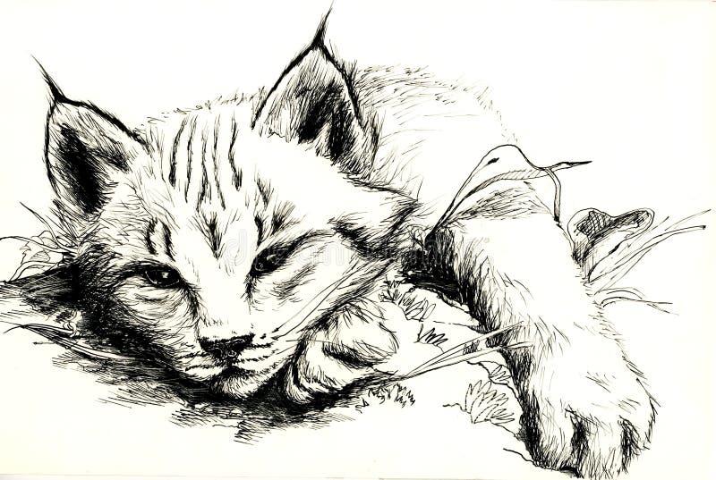 Download Ryś rudy ilustracji. Obraz złożonej z zatoka, bobcat, artystyczny - 1230767