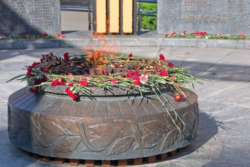 Ryazan, Rusland De monumenten gevallen militairen Eeuwige vlambrandwonden Op het monument zijn rode anjers royalty-vrije stock foto's