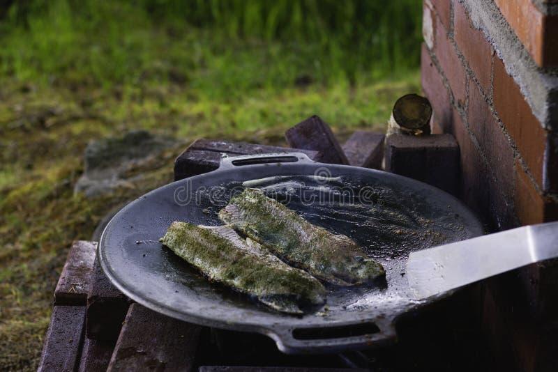 Ryba Na Żelaznej niecce obraz royalty free