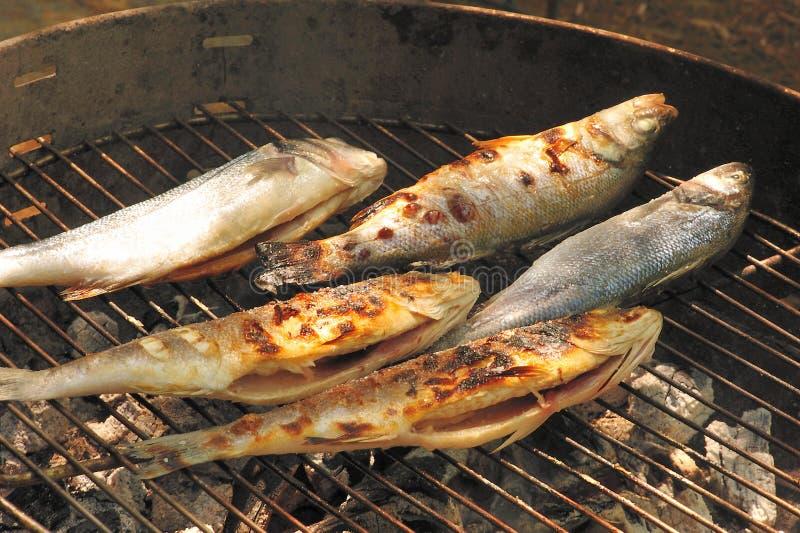 ryba piec na grillu obrazy royalty free