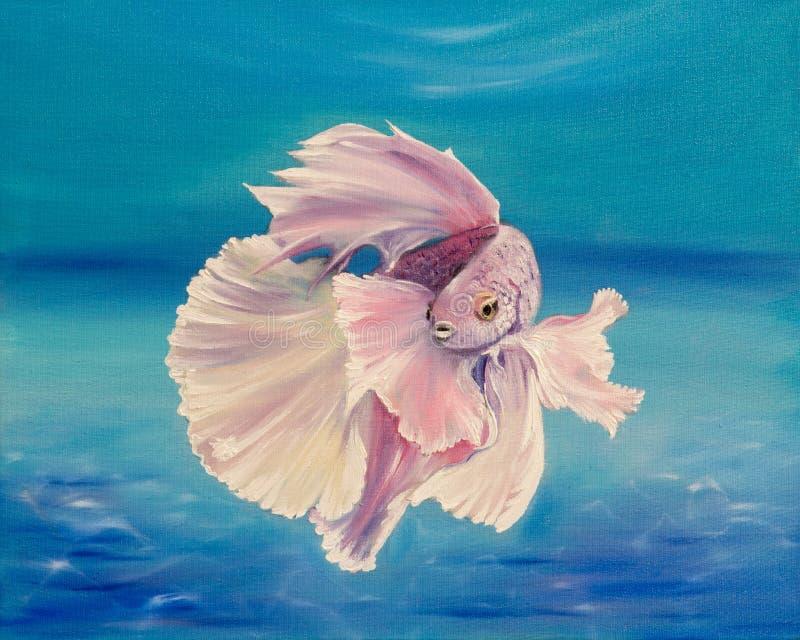 ryba siamese walczył royalty ilustracja