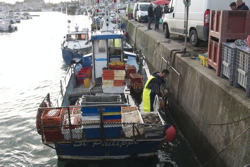 Rybacy rozładowywają pudełka z świeżym chwyta whelk owoce morza od łodzi rybackiej zdjęcie stock