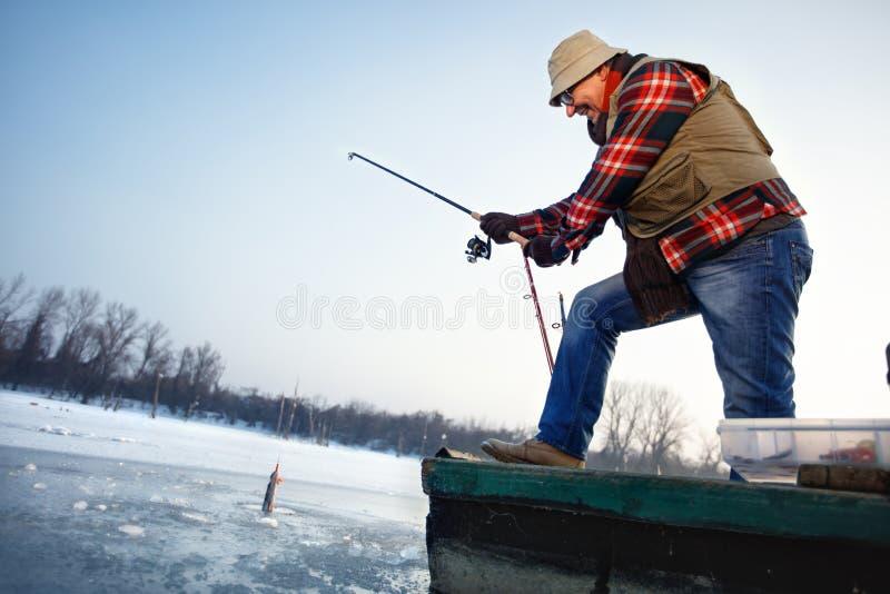 Rybak remis hacząca ryba od zamarzniętej wody zdjęcia royalty free