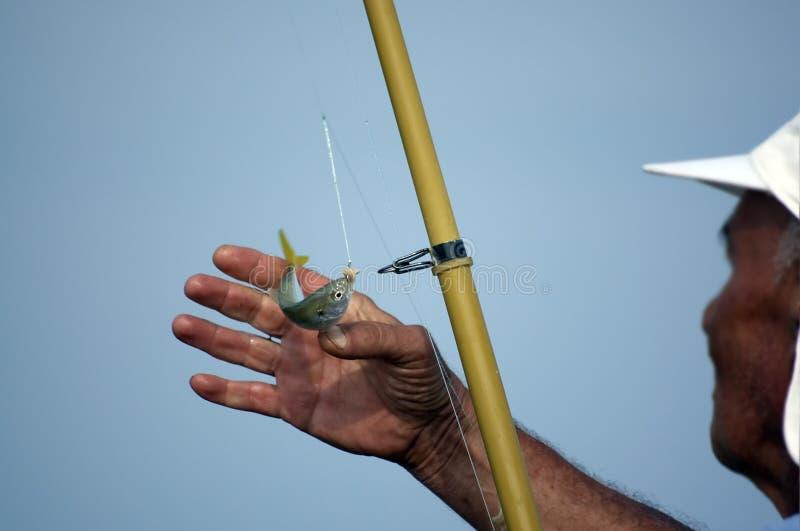 rybak ryb fotografia royalty free