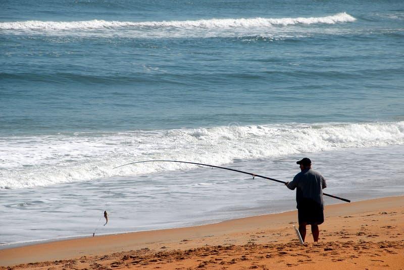 rybak surf zdjęcie royalty free