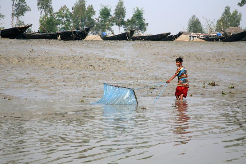 Rybak używa sieć rybacką w tradycyjnym sposobie w Ganges rzece w Gosaba dla łowić, India fotografia stock