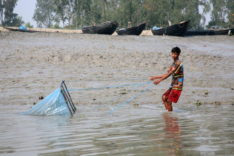 Rybak używa sieć rybacką w tradycyjnym sposobie w Ganges rzece w Gosaba dla łowić, India obraz stock