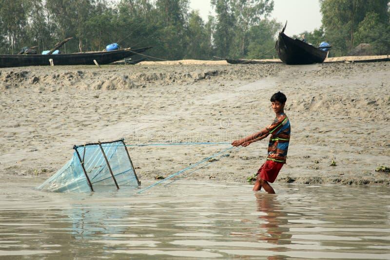 Rybak używa sieć rybacką w tradycyjnym sposobie w Ganges rzece w Gosaba dla łowić, India zdjęcia stock