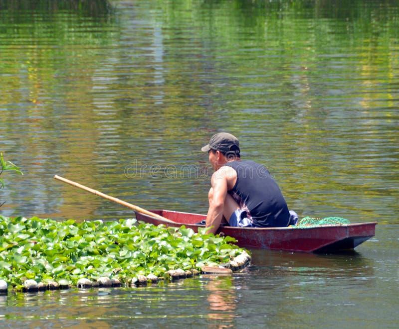 Rybak w łodzi na Zachodnim jeziorze w Hanoi obraz royalty free