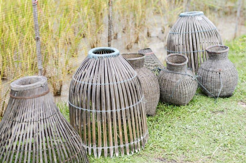 Rybi bambusowy oklepiec zdjęcie royalty free