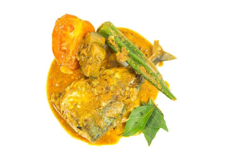 Rybi curry Ja zdjęcie royalty free