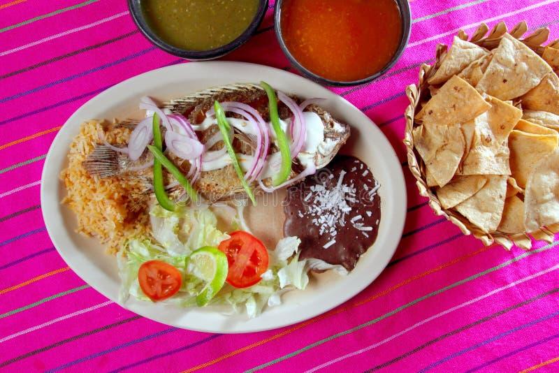 rybi czosnku Mexico mojarra mojo tilapia zdjęcie stock