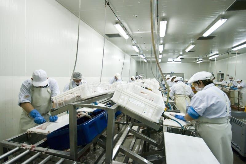 rybi fabryka przerób obraz stock