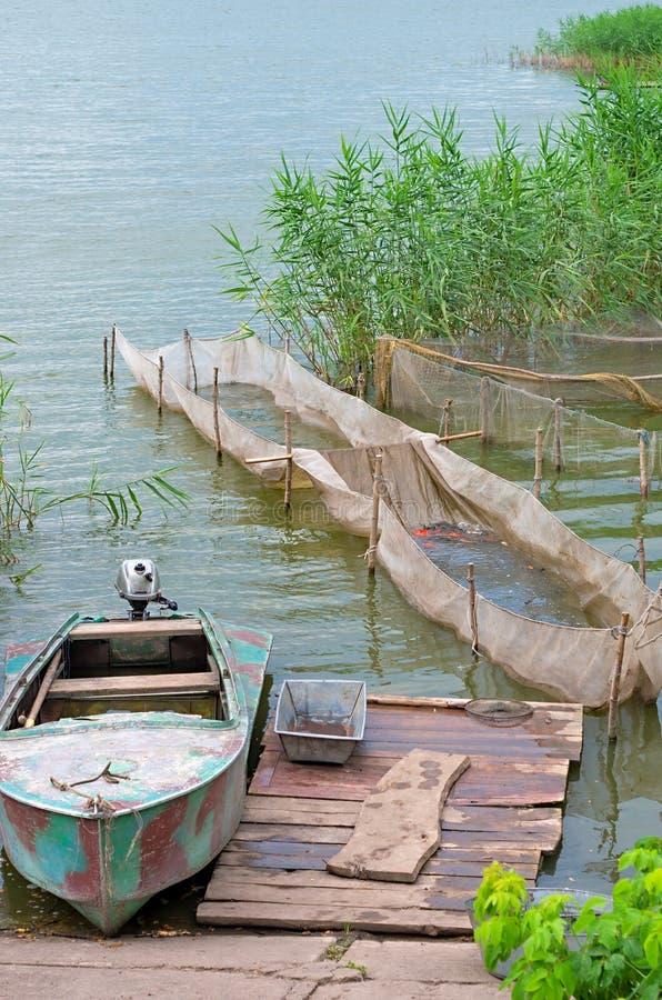 Rybi gospodarstwo rolne obrazy stock