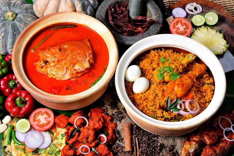 Rybi Kierowniczy curry Rice & Biryani zdjęcia royalty free