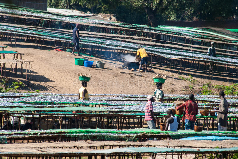 Rybi rynek w Malawi obrazy stock