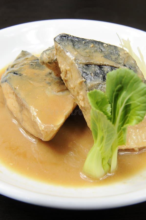 rybi rząd obrazy royalty free