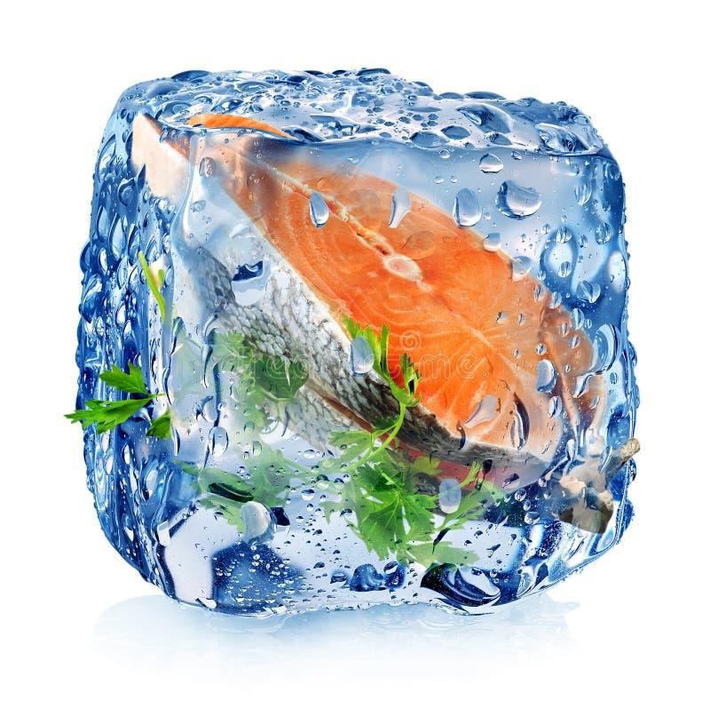 Rybi stek w kostce lodu obrazy stock