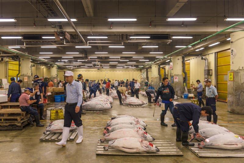 Rybi Tsukiji rynek zdjęcie stock