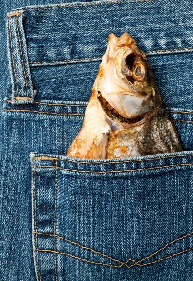 rybia kieszeń zdjęcie royalty free