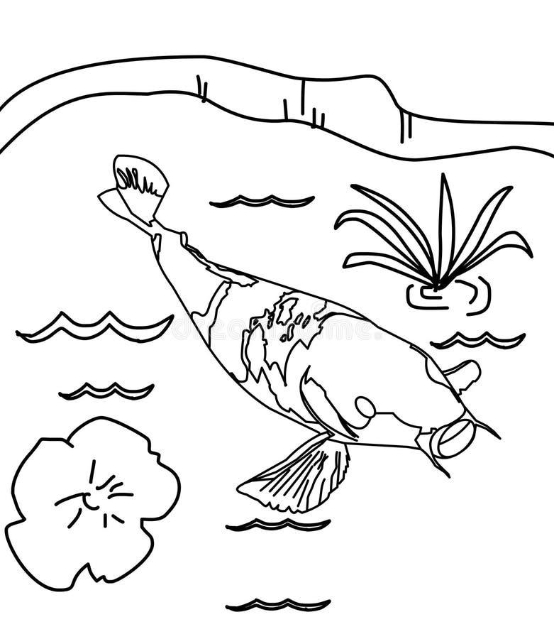 Rybia kolorystyki strona ilustracja wektor