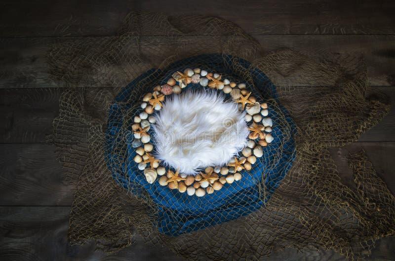 Rybiej sieci i seashell Nowonarodzonej fotografii cyfrowy tło pro fotografia stock