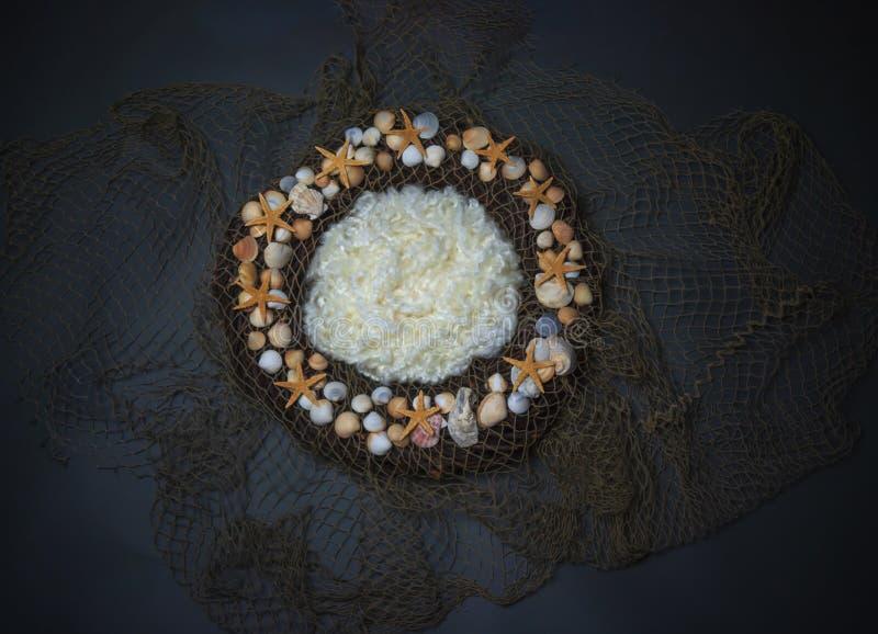 Rybiej sieci i seashell Nowonarodzonej fotografii cyfrowy tło pro zdjęcia royalty free