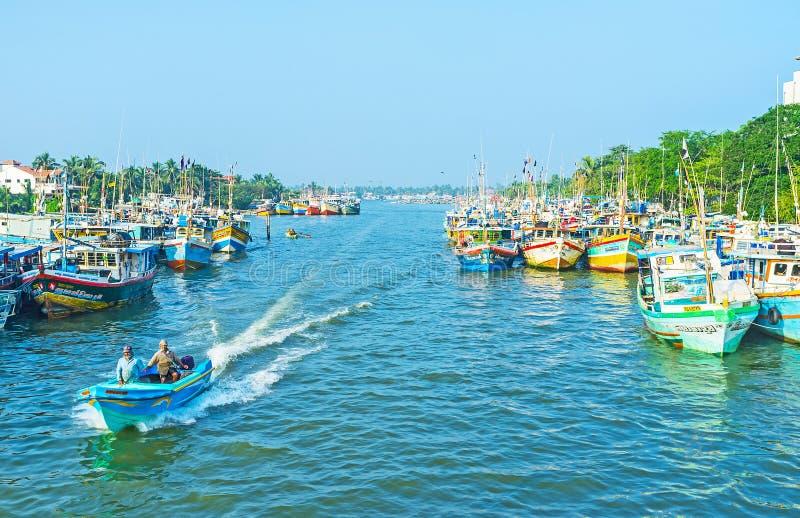 Rybołówstwa schronienie Negombo obrazy royalty free