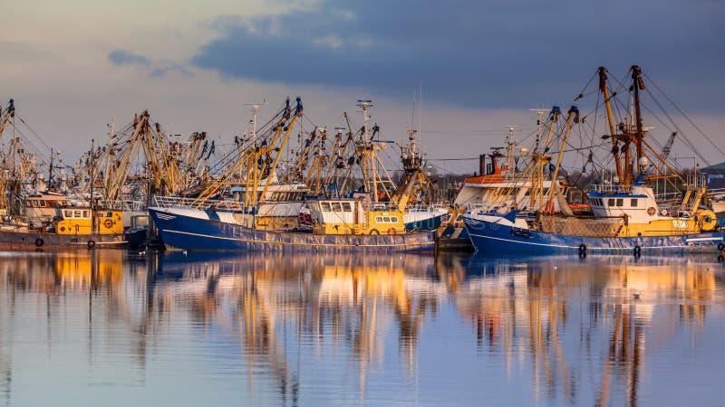Rybołówstwo w Lauwersoog schronieniu obrazy stock