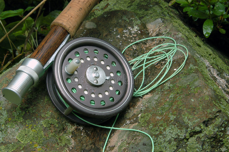 ryby urządzeń fotografia royalty free