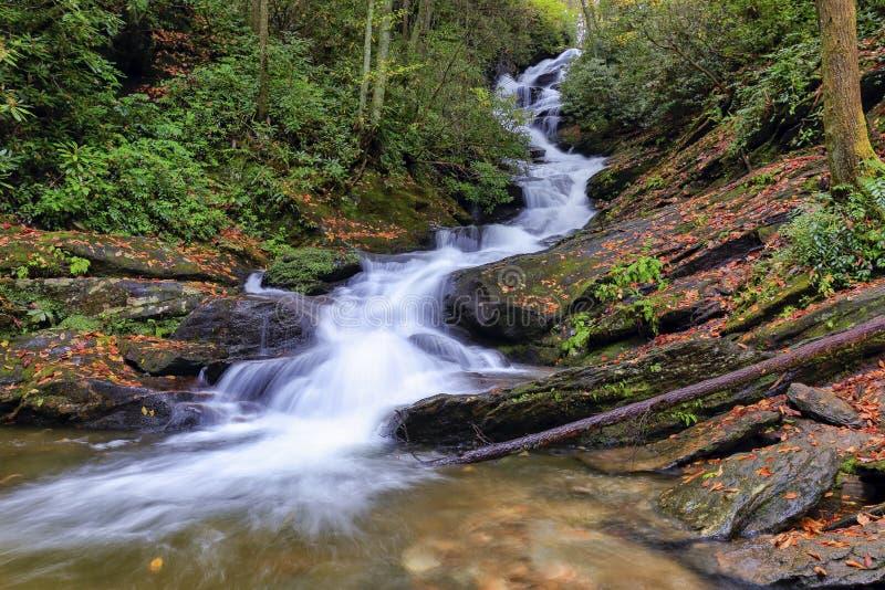 Ryczeć rozwidlenie spadki, Pólnocna Karolina zdjęcie royalty free