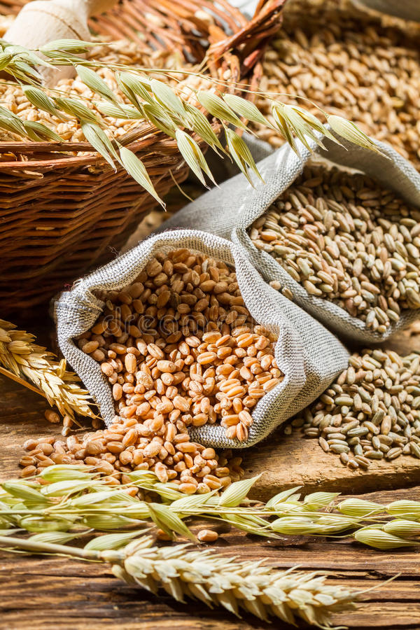 Rye, barley and wheat are the basis for good bread stock photography