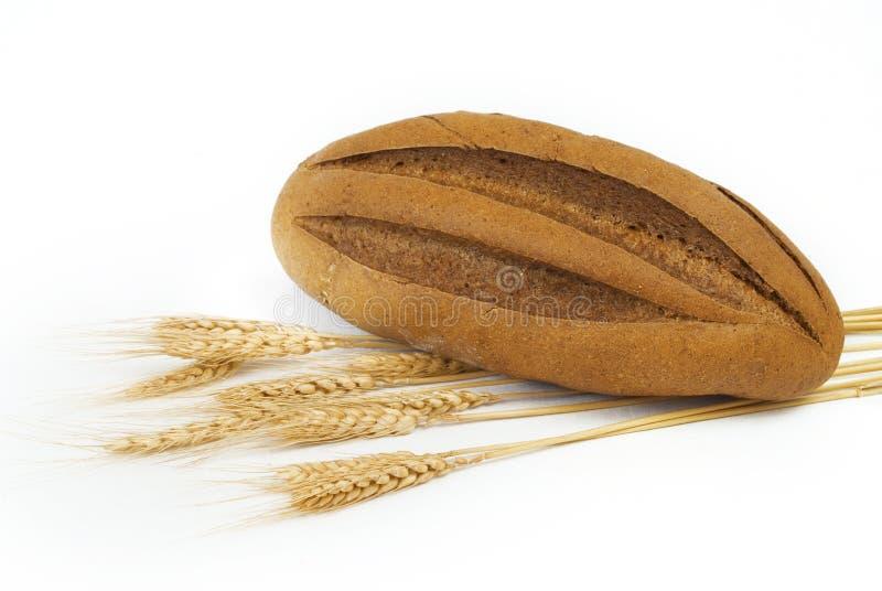 Rye-Brot stockbilder