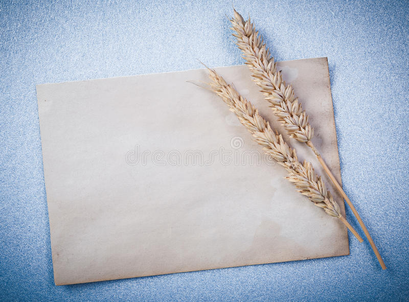 Rye ears vintage paper sheet on blue background top view.  royalty free stock image