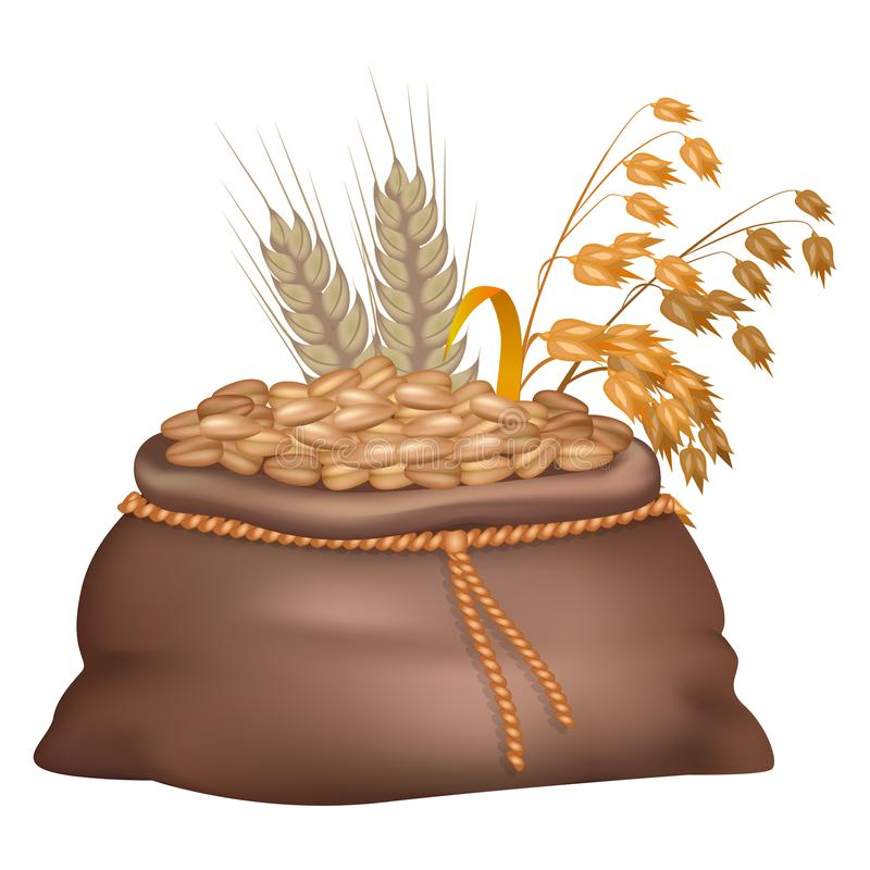 Rye Grains in Brown Sack with its and Oat Ears. On background isolated on white. Closeup vector illustration of crude crop harvest royalty free illustration