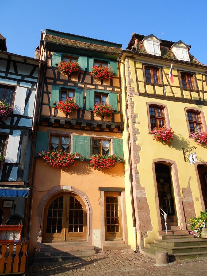 Ryglowi domy, colours, kwitną, w typowym alsatian miasteczku, Riquewihr zdjęcie stock