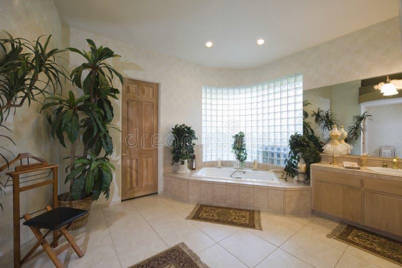 Rymligt badrum hemma royaltyfri bild