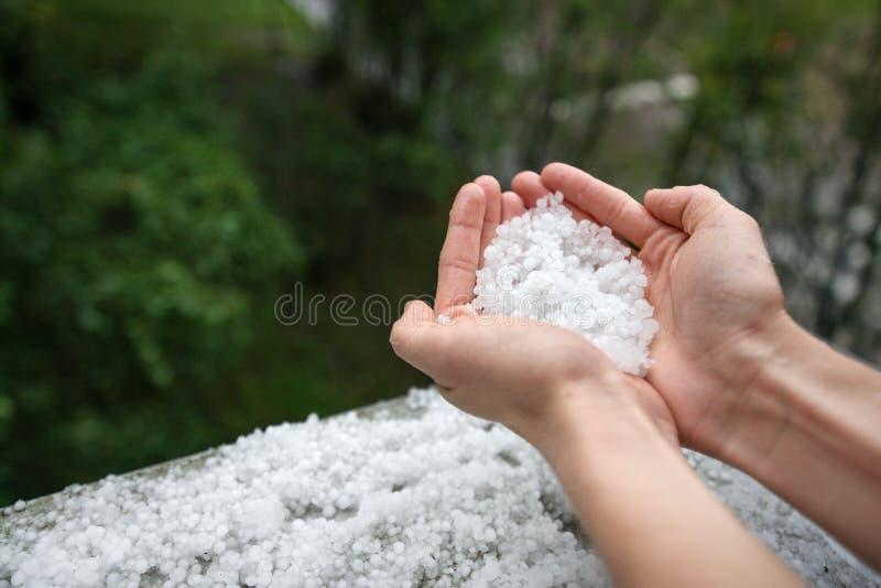 Rymma att frysa grovkorniga hageliskristaller, korn i händer efter stark hagelskur i hösten, nedgång arkivbild